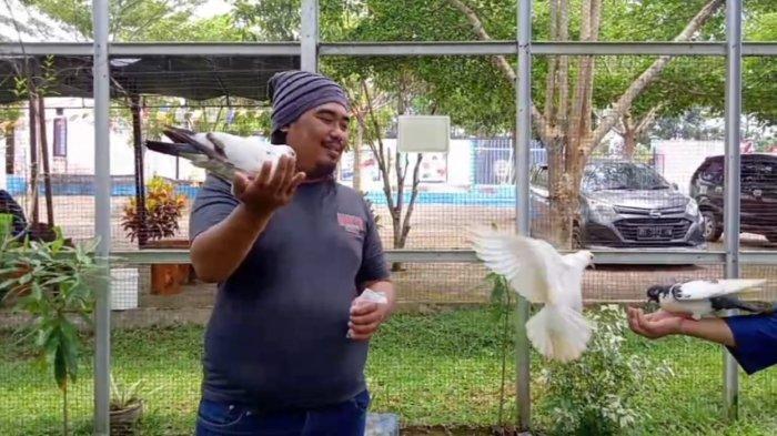 Wisata Jambi, Asiknya Main Bareng Burung di Taman Wisata Air Kito