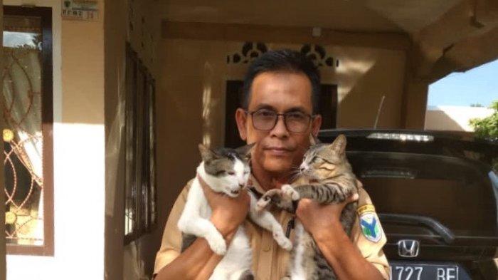 Kisah ASN di Batanghari Yang Penyayang Hewan, Rela Rawat Kucing Liar dan Terlantar Yang Cacat Fisik