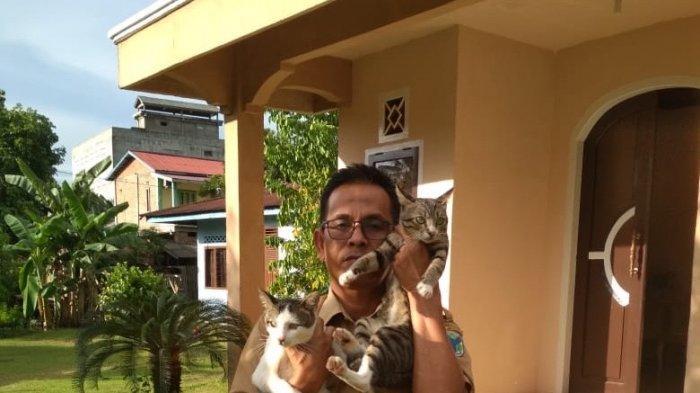 Anwar, ASN di Pemkab Batanghari. Kisah ASN di Batanghari Yang Penyayang Hewan, Rela Rawat Kucing Liar dan Terlantar Yang Cacat Fisik