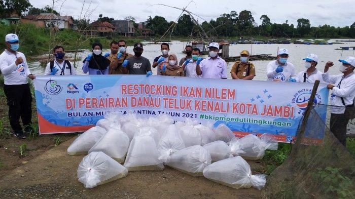 BKIPM Jambi Lakukan Restocking 20.000 Ekor Benih Ikan Nilem di Danau Teluk Kenali Kota Jambi