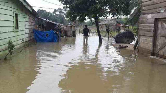 Dua Keluarga Sudah Mengungsi, Hujan Rendam Sejumlah Rumah di Bungo Dani