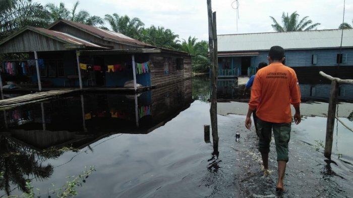 Waspadai Serangan Hewan Buas,Ketinggian Air di Tanjab Timur Mendekati Siaga 3
