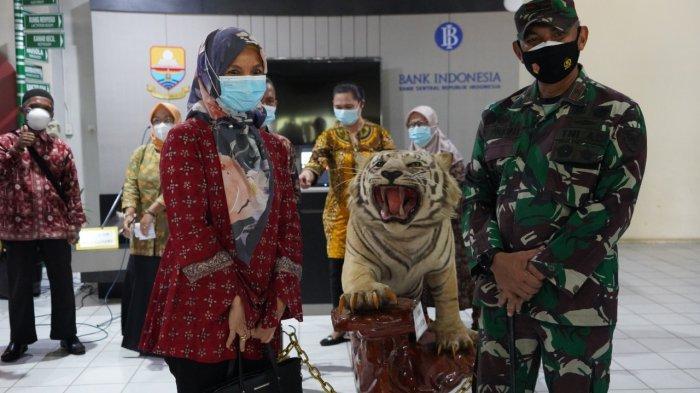 Danrem 042/Gapu Brigjen M Zulkifli serahkan satu ekor offset Harimau Sumatera ke Museum Siginjei Jambi, Jumat (23/4/2021) pagi.