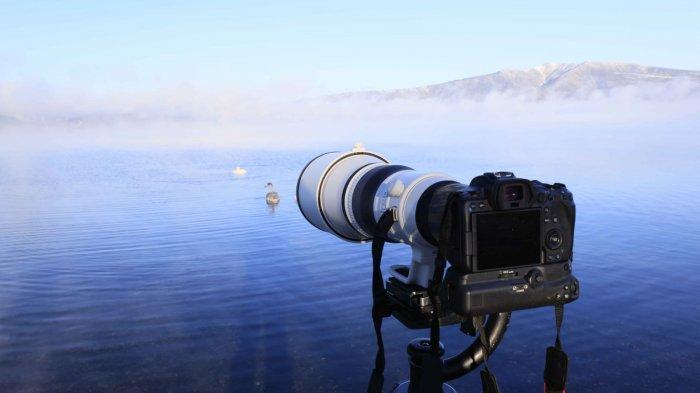 Canon Hadirkan Dua Seri Lensa Super Telephoto