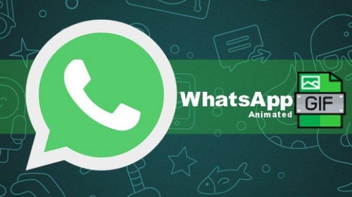 Cara Membuat Gif Sendiri Di Whatsapp Modal Rekaman Video Sendiri Dari Galeri Mudah Tanpa Aplikasi Tribun Jambi
