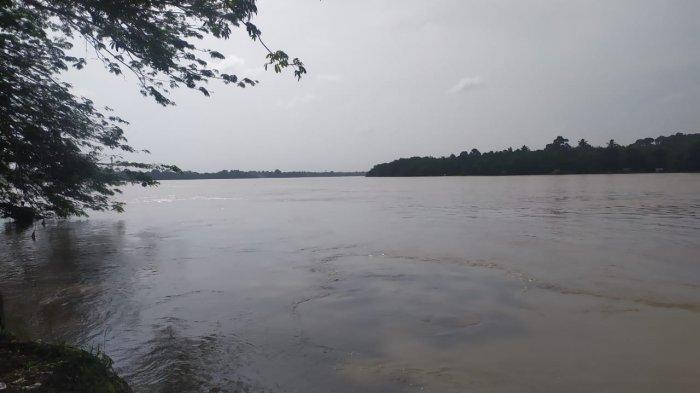 Tinggi Air Sungai Batanghari Hampir 12 Meter, Dua Meter Lagi Legok dan Sijenjang Bisa Banjir