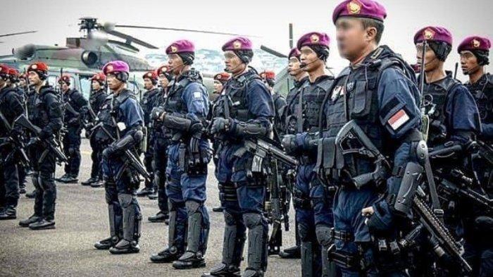SEJARAH Menyebutkan AS Gentar dengan Denjaka, Elite Marinir TNI AL dengan Moto Satya Wira Dharma