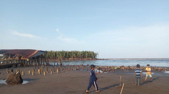 Pohon Pelindung Makin Hilang, Ancaman Ombak Menghantui Warga Desa Air Hitam Laut