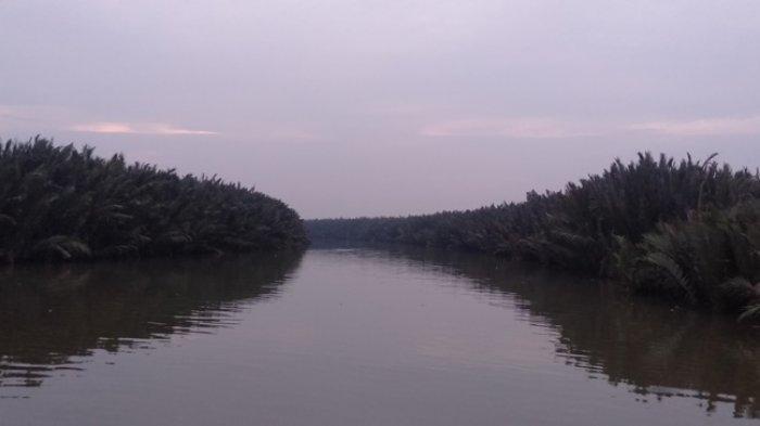 Masih Dijumpai Kawasan Blank Spot di Tanjung Jabung Timur, Ini Tanggapan Kominfo