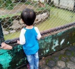 Dua Wisata Kebun Binatang Kota Jambi Selalu Ramai Saat Liburan Hari Raya Idul Fitri