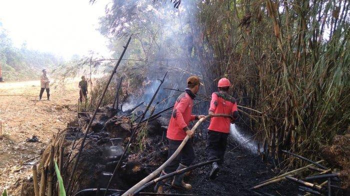 Diduga dari Puntung Rokok, Lahan Kosong Milik Warga di Desa Simpang Terusan, Batanghari, Terbakar