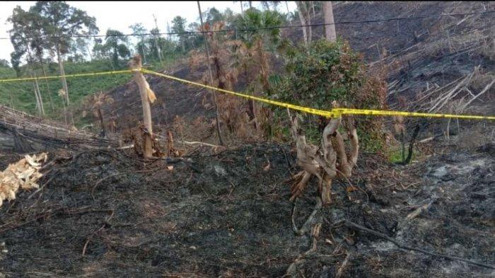 Polisi Selidiki Pemilik Lahan Terbakar dan Penyebabnya, Tiga Hektare Hangus di Bangko