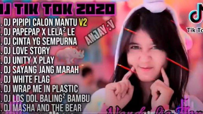 Download Lagu MP3 DJ PIPIPI Calon Mantu untuk Joget TikTok, Ada Versi DJ Remix