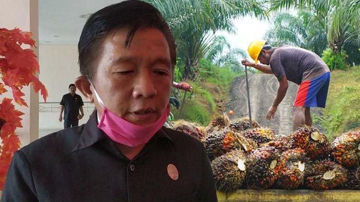 Anggota DPRD Tanjabbar Siap Digantung di Monas Bila Terbukti Mencuri Sawit PT Produk Sawitindo Jambi