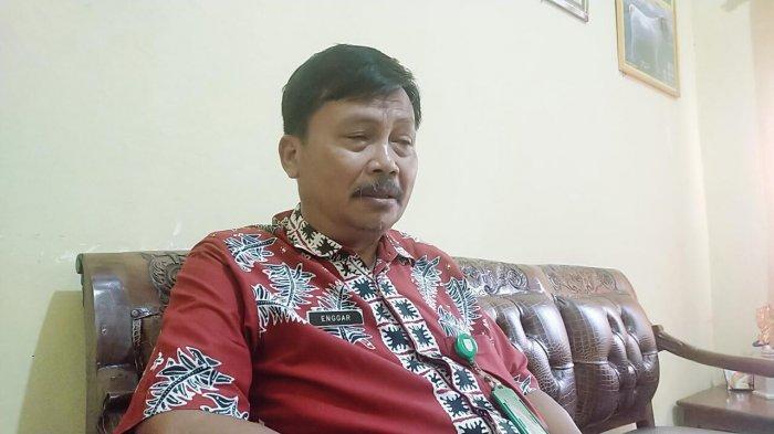 Stok Hewan Kurban di Kabupaten Bungo Lebih dari Cukup, Harga Tergantung Ukuran