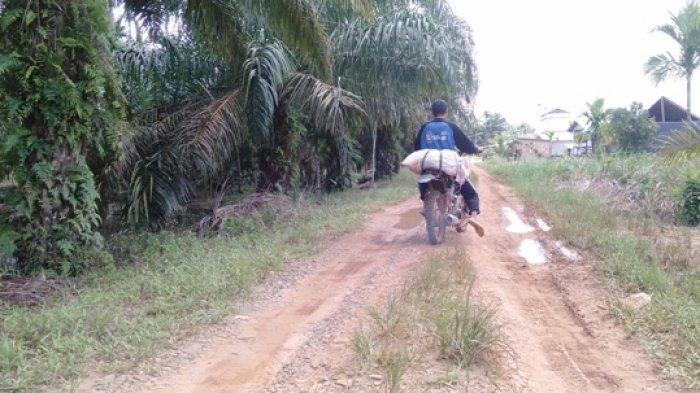 Warga Dusun Parit Bengkok Tanjabtim Hingga Kini Belum Menikmati Listrik dan Jalan Mulus