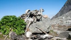 Misteri Danau Roopkund yang Berisi Ratusan Kerangka Manusia, Ngeri