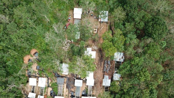 Siapa Membekingi Bisnis Minyak Ilegal di Jambi? Lihat Foto dari Udara Penampakan Lokasi Pengolahan