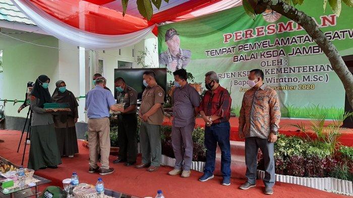 Pemberian penghargaan Direktur Jendral Konservasi Sumber Daya Alam dan Ekosistem (Dirjen KSDAE) Kementerian Lingkungan Hidup dan Lingkungan RI di Pusat Tempat Penyelamatan Satwa (PTPS) Mendalo, Selasa (15/12/2020).