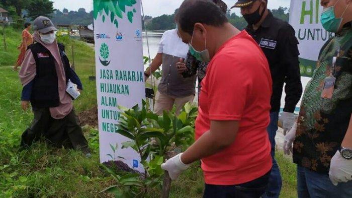 Jasa Raharja Jambi menanam bibit pohon di Danau Sipin. Kegiatan menanam bibit pohon yang dilakukan serentak oleh seluruh kantor cabang Jasa Raharja di Indonesia.