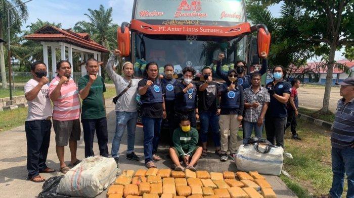 BNNP Jambi Ungkap Modus Pengiriman 45 Kg Ganja Asal Aceh, Ganja Dijemput di Tepi Jalan