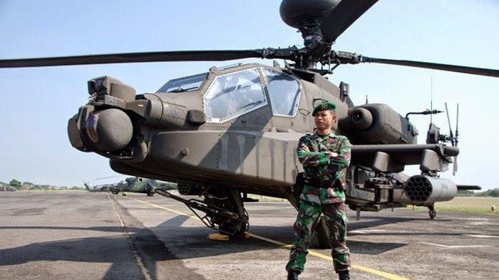 Sosok Ini Sebut KKB Papua Bisa Mudah Ditumpas dengan Kendaraan TNI Ini,  Namun Terkendala Negara Ini