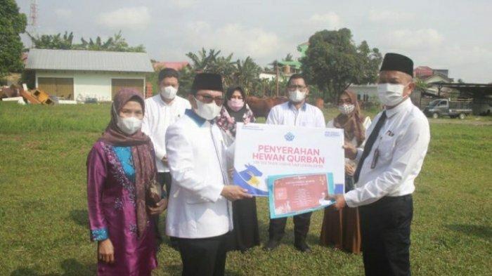 UIN Serahkan Hewan Qurban pada Kabupaten Muaro Jambi