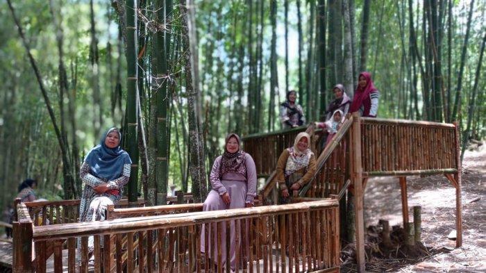SUASANA sejuk dan asri, langsung terasa saat memasuki kawasan Hutan Bambu Buluh Perindu, di Desa Baru Semerah, Kecamatan Tanah Cogok, Kabupaten Kerinci, Jambi.