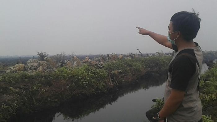 Walhi: Jelang Pilkada Rawan Pemberian Izin Lahan pada Perusahaan
