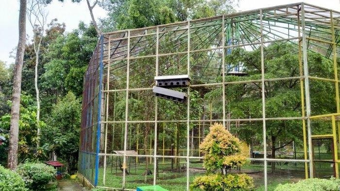 Hutan Kota M Sabki Kota Jambi Kini Rapi dan Cantik, Pembangunan Digenjot Sejak 2020