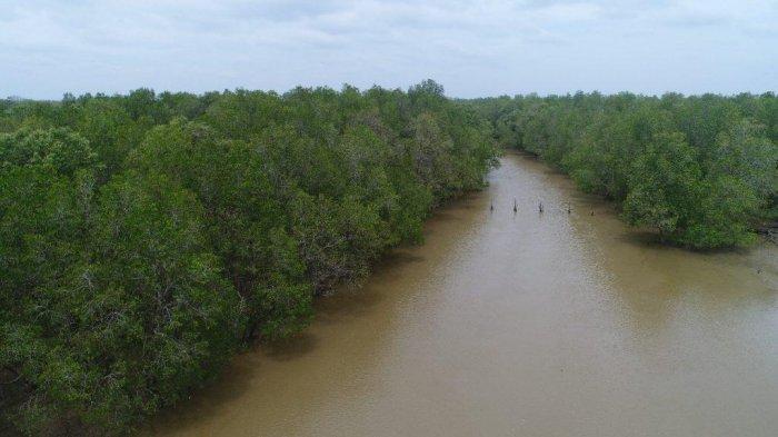 Ayo Kunjungi 11 Objek Wisata Menarik dan Kekinian yang Lagi Viral di Tanjung Jabung Barat