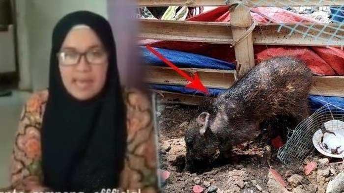 Ibu Wati Ancam Bunuh Diri Usai Diusir Warga Karena Tuduh Tetangganya Jalani Pesugihan Babi Ngepet
