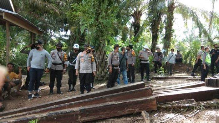 BREAKING NEWS 127 Potong Kayu Meranti Hasil Illegal Logging Diamankan Tim Gabungan di Kumpeh Ilir