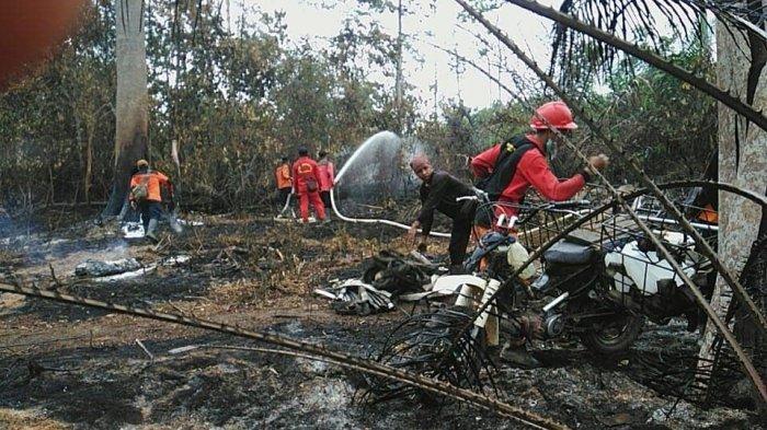 Ini Jumlah Lahan yang Terbakar di Taman Nasional Bukit Duabelas Kurun Tiga Tahun Terakhir