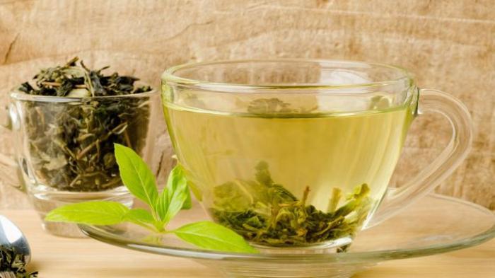 Ilustrasi teh hijau.