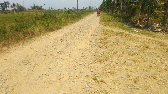 Sekira 7 Km Jalan di Desa Koto Kandis Tanjabtim Masih Tanah, Pemdes Berharap Ada Peningkatan