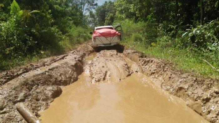 Tiga Desa di Jangkat Merangin Terisolir Akibat Jalan Buruk, Warga Kesulitan Akses Faskes Saat Sakit