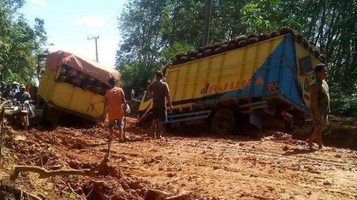 Belum Punya Rekomendasi dari TNKS, Pembangunan Jalan di Serampas Terancam Gagal