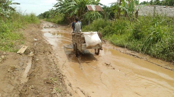 Air Hujan Terjebak Dalam Lubang Jadi Penyebab Jalan di Muara Sabak Ilir Rusak Parah