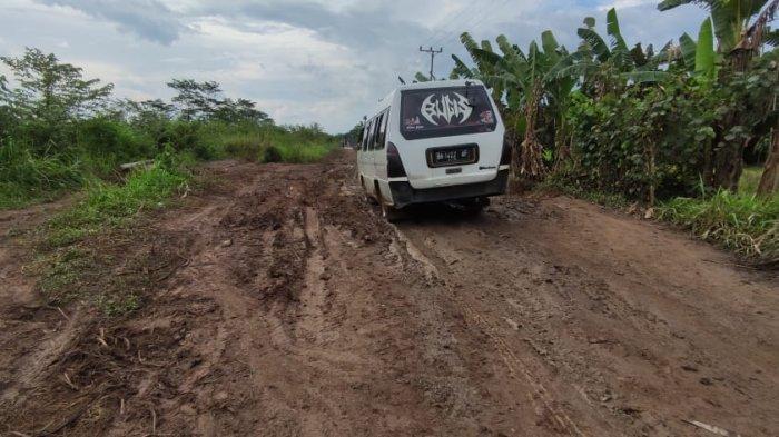 Tidak Mendapat Perbaikan, Warga Desa Kota Raja Tanjab Timur Perbaiki Jalan Secara Swadaya