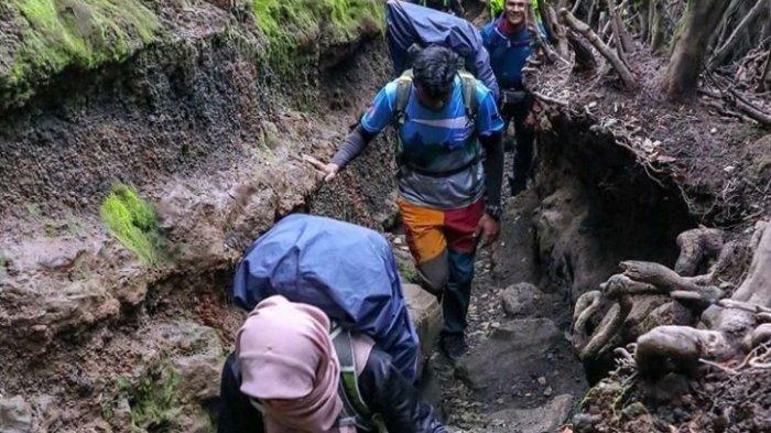 Jalur Pendakian ke Gunung Kerinci Ditutup, 3 Pendaki Asal Jambi Turun, Erupsi Sempat Bikin Panik