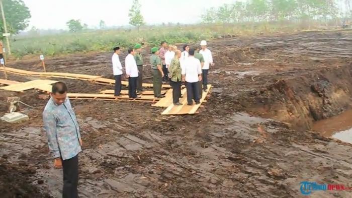 Pembuatan Kanal di Lahan Gambut jadi Tanggungjawab Perusahaan
