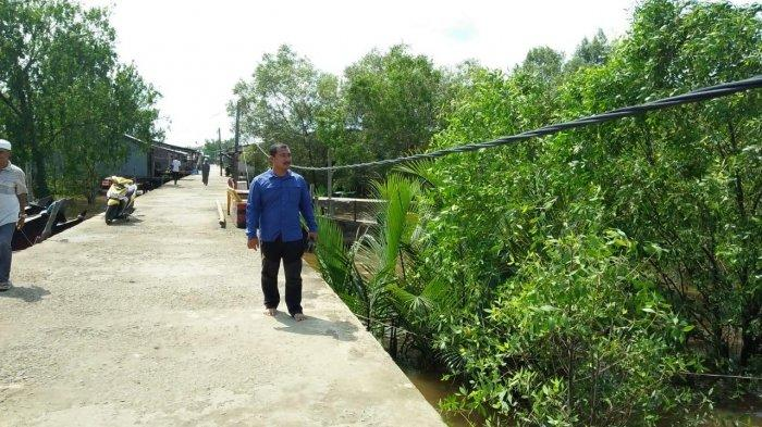 Warga Laporkan Kabel PLN Menjuntai hingga ke Tanah, Ini Jawaban Kepala PLN Rayon Kuala Tungkal