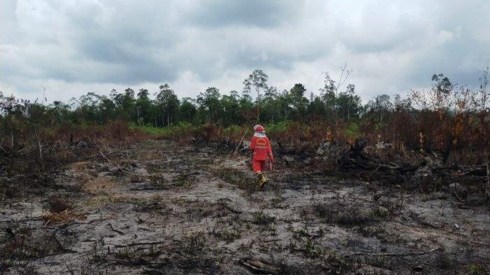 14 Titik Api di Batanghari Berhasil Dipadamkan, Pembakar Lahan Didenda Rp 5 Miliar
