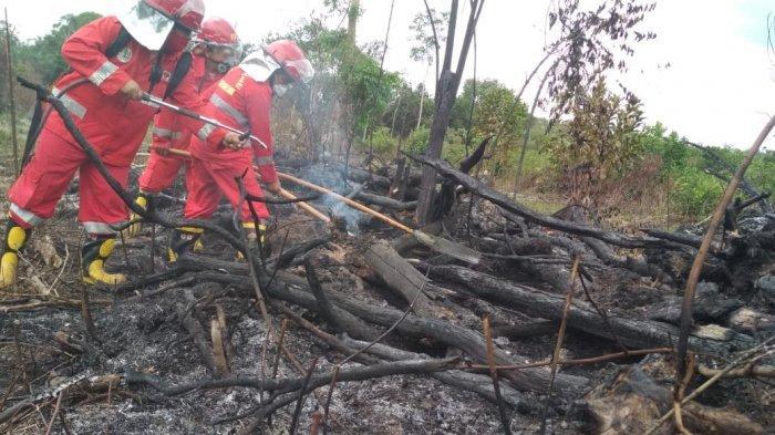 Petugas memadamkan api yang membakar lahan di Natanghari. 14 Titik Api di Batanghari Berhasil Dipadamkan, Pembakar Lahan Didenda Rp 5 Miliar