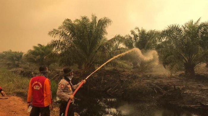 Terbakar Lagi, Karhutla Masih Mengancam