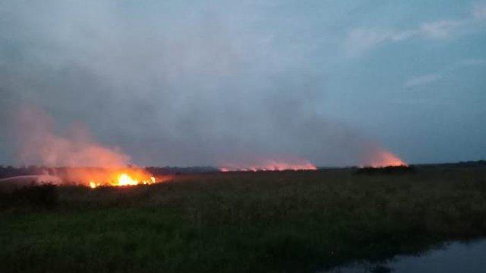 Situasi Kabupaten Muaro Jambi Terkini dari Titik Api
