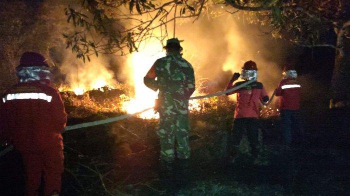 Terjadi Karhutla di Sarolangun, 20 Tumbuk Lahan Kosong Terbakar
