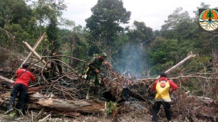 Desa Karang Mendapo Terjadi Karhutla, Satgas Temukan 1 Hektare Lahan Dibakar Dengan Cara Stekingan