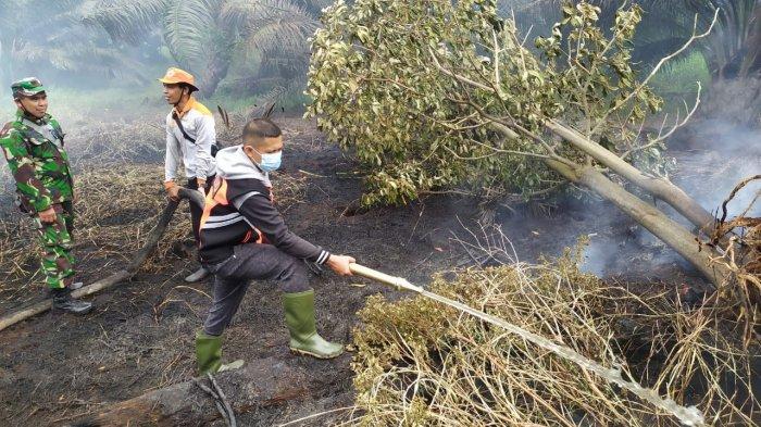 Puluhan Tumbuk Lahan Kosong di Kasang Pudak Terbakar, Polisi Selidiki Penyebab Kebakaran